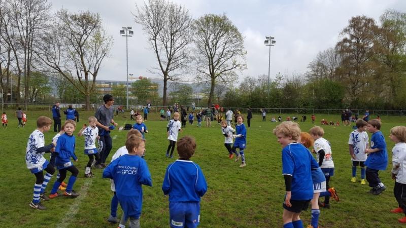 U8-U12 Junglöwen SAS-Turnier