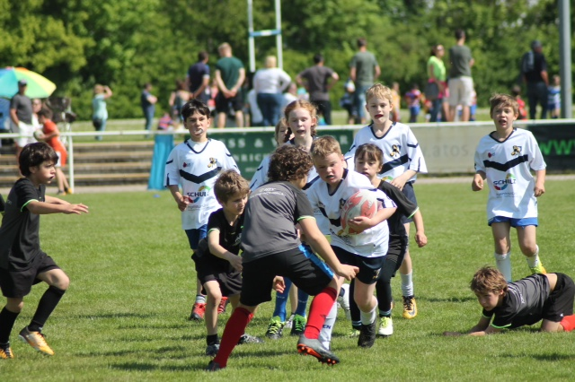 Review SAS-Turnier der U8-U12 Junglöwen