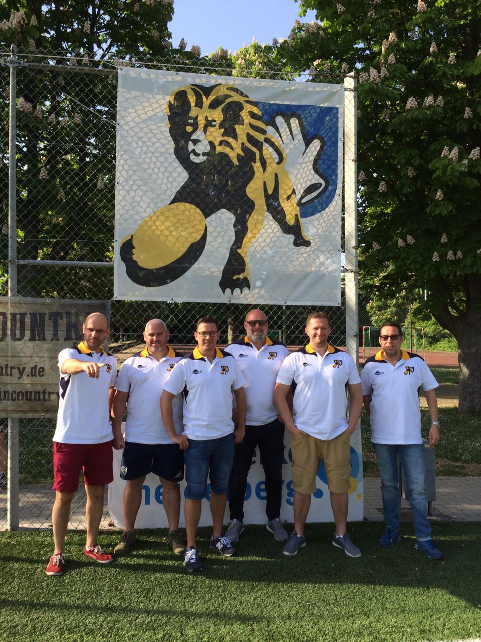 Lions for Lions